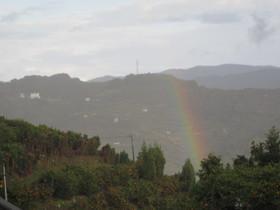 2012.11.24.niji (3).jpg