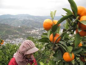 2012.12.18.kurotake (1).jpg